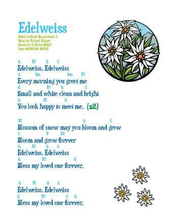 Edelweiss, a Beautiful, Illustrated Song in 2018 | listen ...