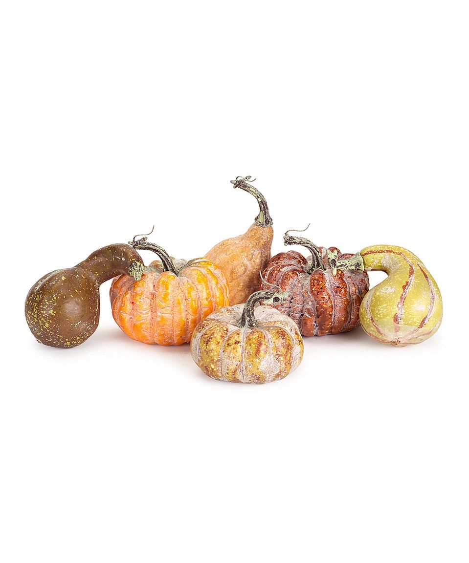 Look at this #zulilyfind! Gourd Décor - Set of Six by Melrose #zulilyfinds