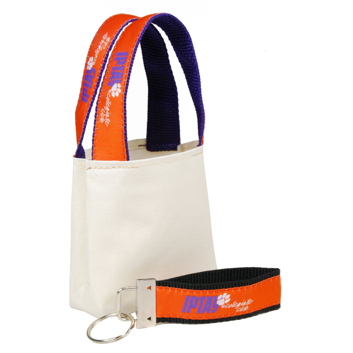 "The ""Mini SWAG Bag"" with Custom Strap Handles"