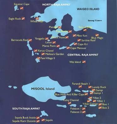 Pin On Raja Ampat Indonesia
