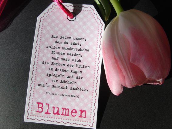 Gastgeschenke Gastgeschenk Blumensamen Rosa Ein