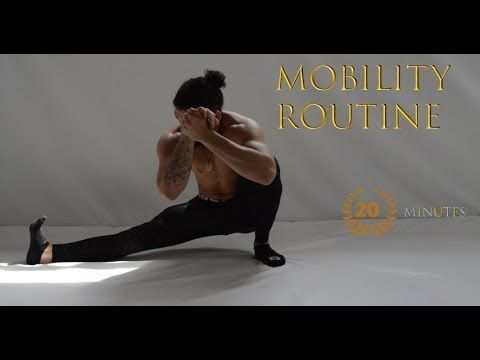 daily mobility routine l increase flexibility l injury