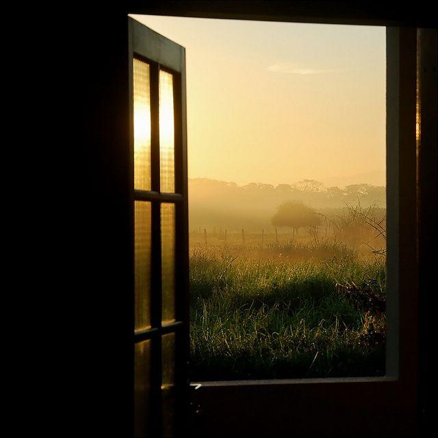 Open Window At Dusk: An Entry From Velvet Bambi