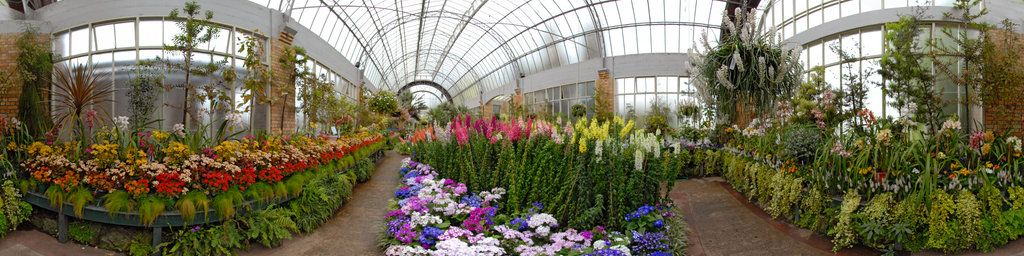 Yet another view from inside the Winter Garden glasshouse in the ...