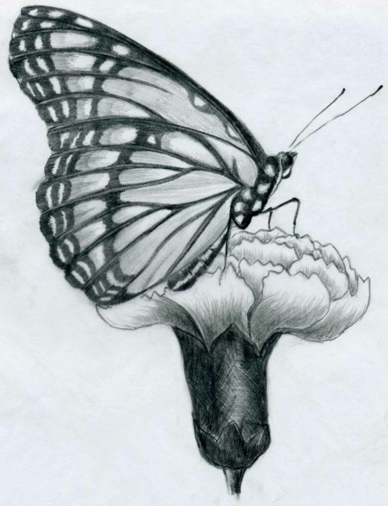 Le migliori 110 immagini su Disegnare bianco e nero... nel ...