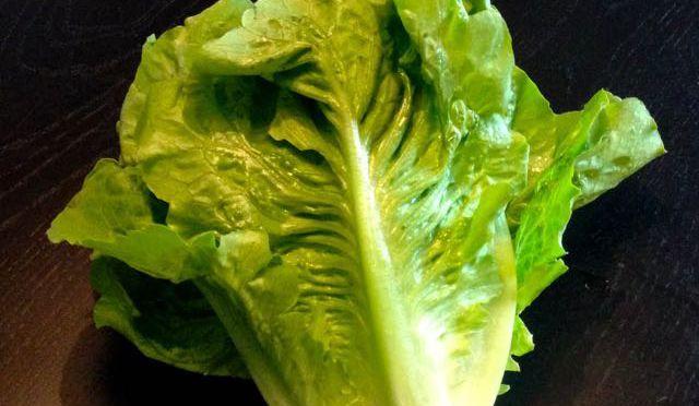 Salaatti nro 57 - Klassikko Caesar-salaatti. Kaikki lähtee kunnon raaka-aineista, eli Sorrin Roomansalaatista.
