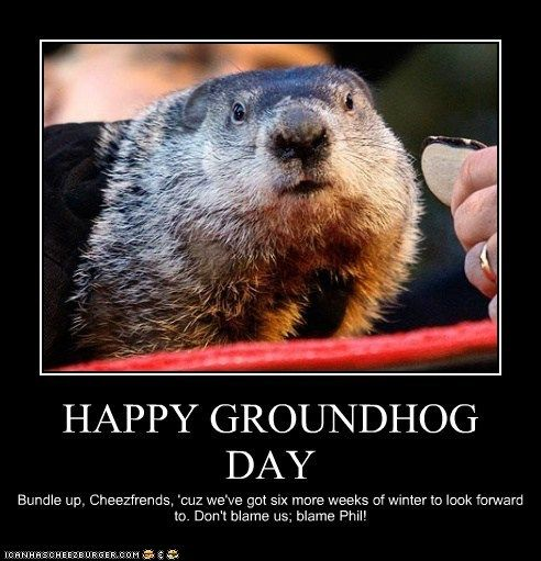 It Already Feels Like Spring In Kentucky So I Sort Of Doubt The Groundhog S Prediction This Year Happy Groundhog Day Groundhog Day Punxsutawney Phil