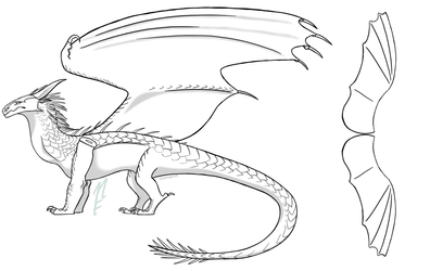Templates On Wof Hybrids Deviantart Wings Of Fire Deviantart Nightwing