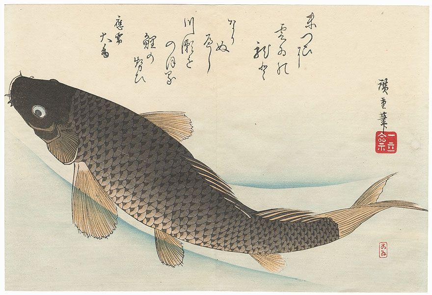 koi fish in japanese culture 2