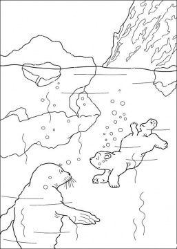 Little Polar Bear Jumps Into The Water Coloring Page Free Printable Coloring Pages Polar Bear Coloring Page Bear Coloring Pages Animal Coloring Pages