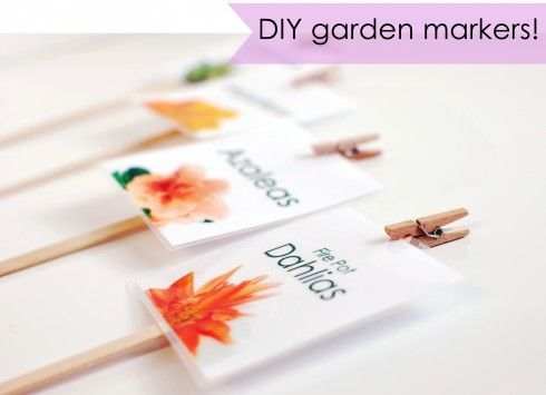 Laminated Labels Pinned With Mini Clothes Peg To Stakes. DIY Garden Tags