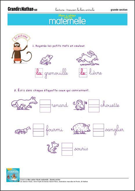 graphisme grande section trouver le bon article - Maternelle Grande Section