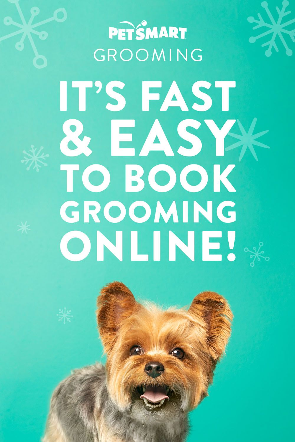 Petsmart Grooming Cute Dogs And Puppies Cat Grooming Dog Grooming