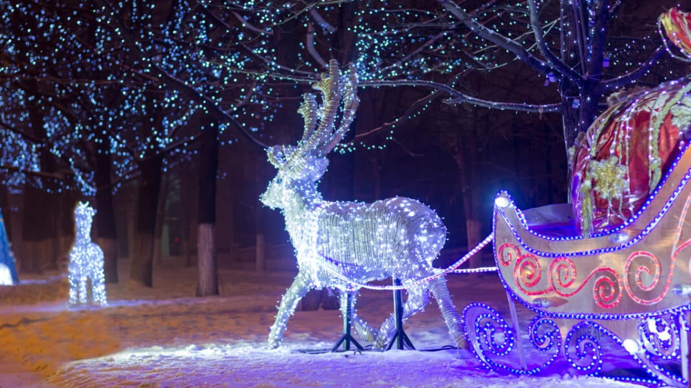 night sledding christmas lights Winter wonder, Holiday