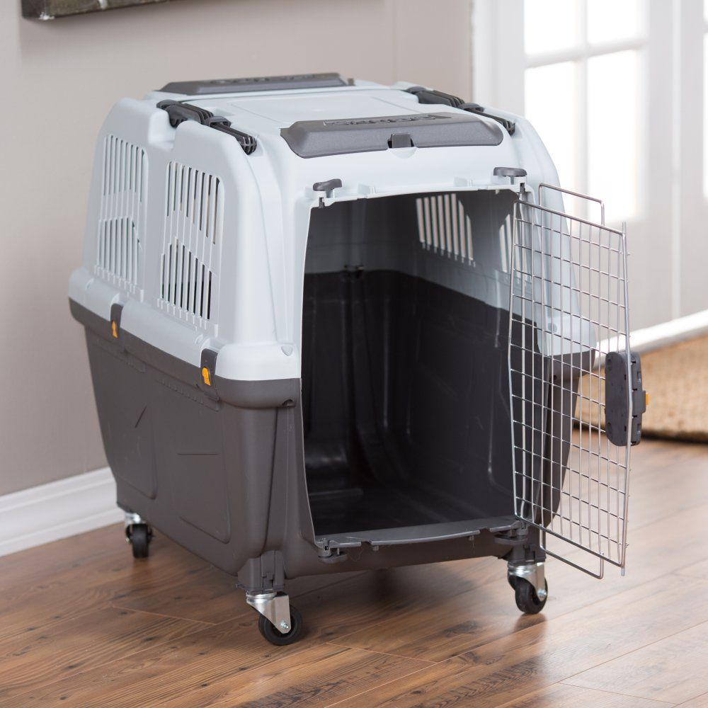 Midwest Skudo Plastic Pet Carrier Dog Carriers At Hayneedle With Images Pet Carriers Pets Dog Carrier
