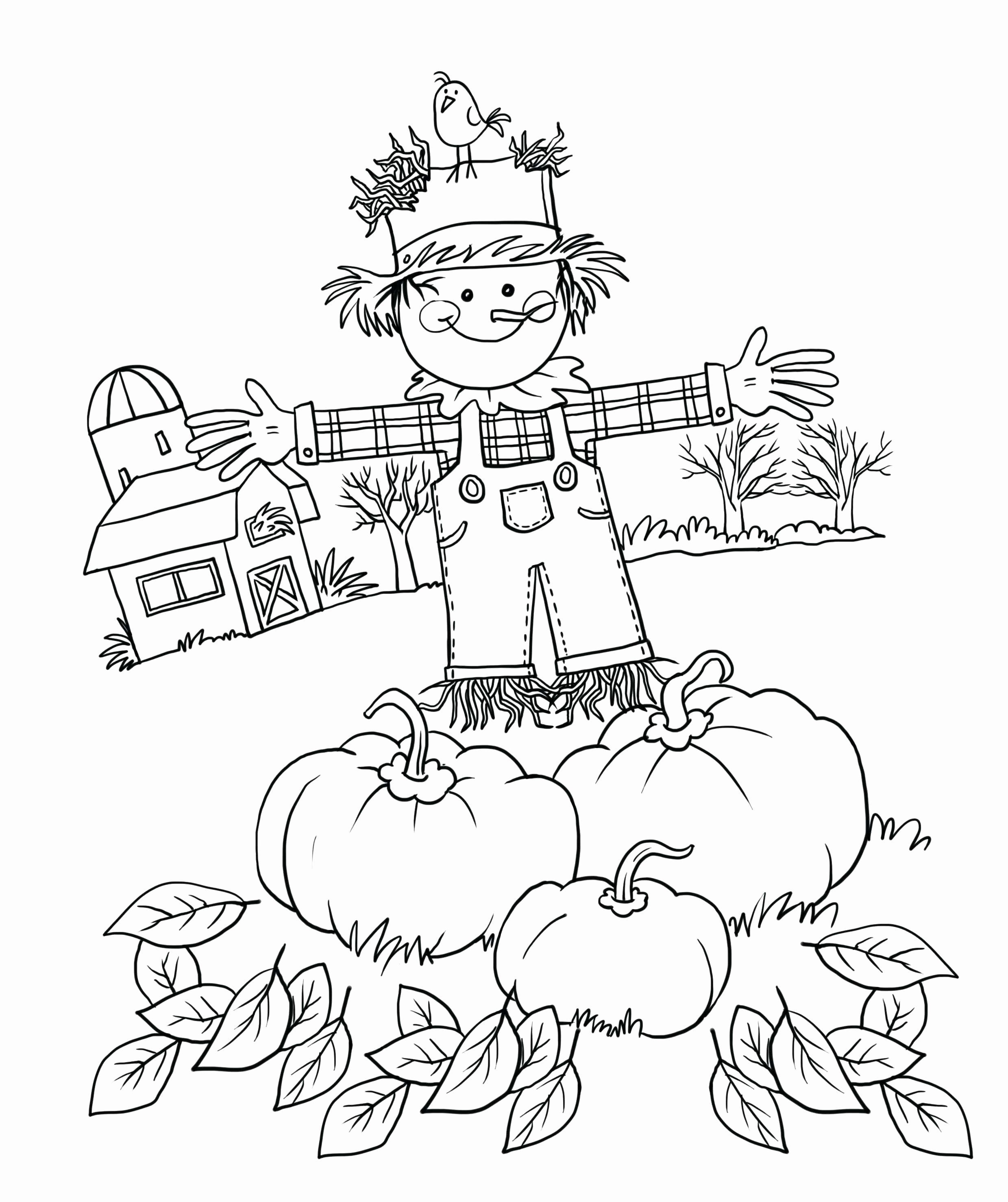 Animal Coloring Pages For 1st Grade Beautiful Addition Coloring Page Thanksgiving Nobelp F In 2021 Fall Coloring Sheets Fall Coloring Pages Thanksgiving Coloring Pages