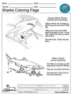 Shark Coloring Pages Movie Shark Tale Classroom Ideas Shark