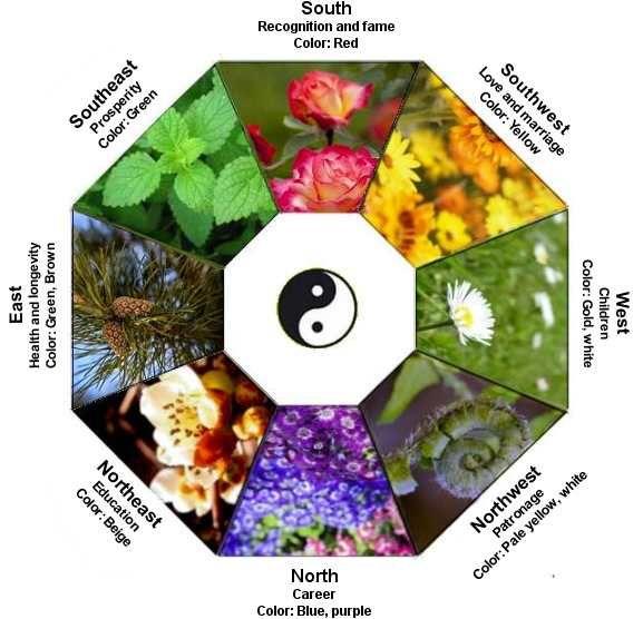 feng shui garden bagua garden Pinterest Feng shui, Corner and - feng shui garten bagua