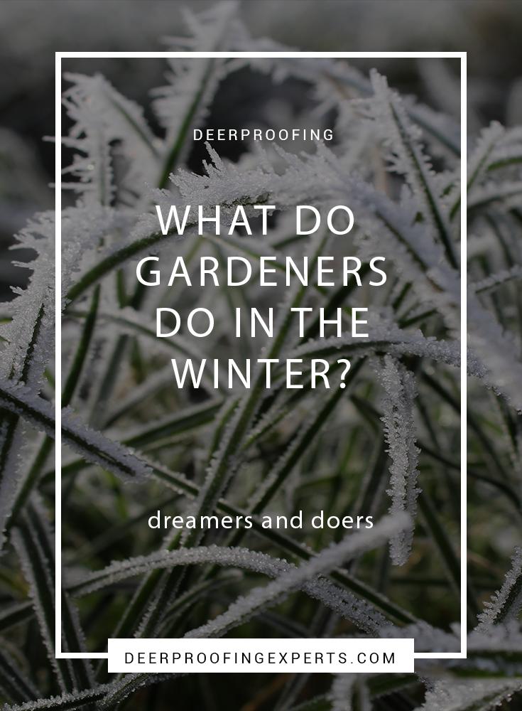 18fd53c84968e77d9b20d32eda6cc7bb - What Can Gardeners Do In Winter