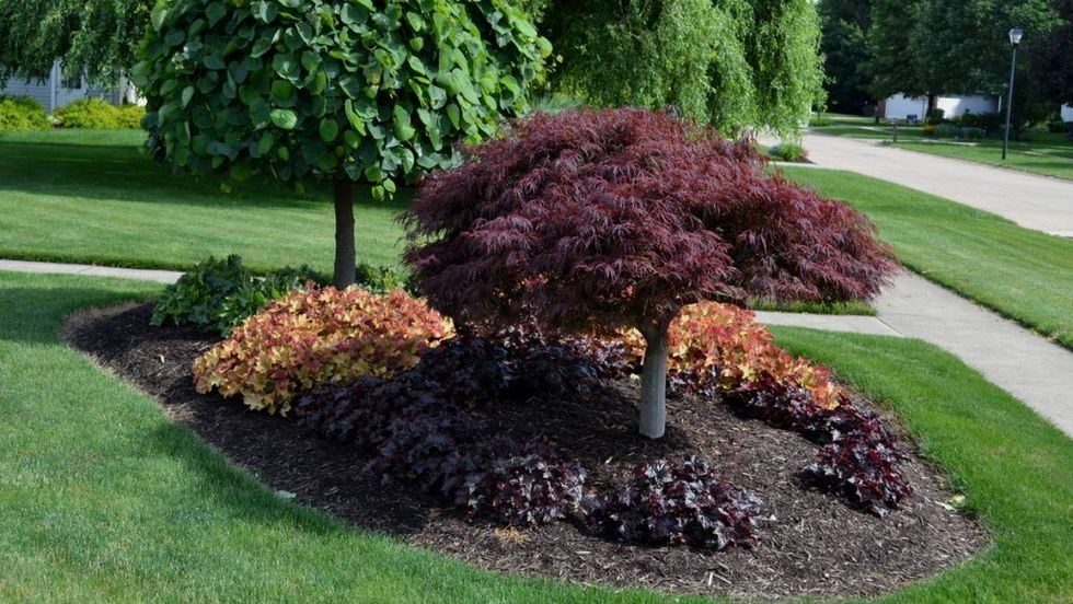 lawn care services landscapingtips landscaping tips and tricks