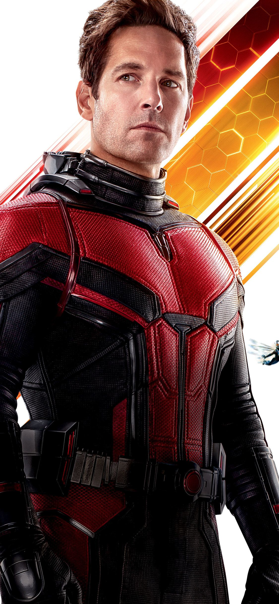 1125x2436 Paul Rudd As Antman In Ant Man And The Wasp 10k Iphone Xs Iphone 10 Iphone X Hd 4k Wallpapers Imag Ant Man Marvel Paul Rudd Ant Man Man Thing Marvel