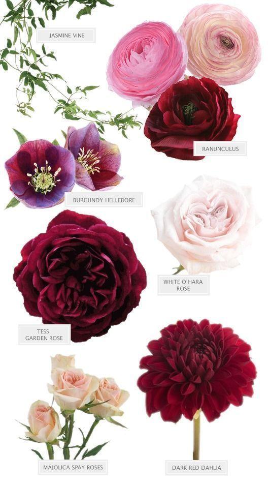 Ich kann nicht aufhören, auf diesen Burgunder-Blumenstrauß von Seed Floral zu …