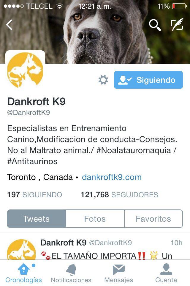 A todos los animaleros! Les recomendamos seguir a @dankroftk9 donde podrás leer tips y consejos perrunos y más