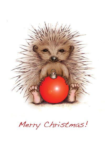 Prickly Christmas Hedgehog Christmas Card Via Etsy Hedgehog Christmas Hedgehog Art Hedgehog Illustration