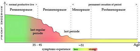 menopause perimenopause