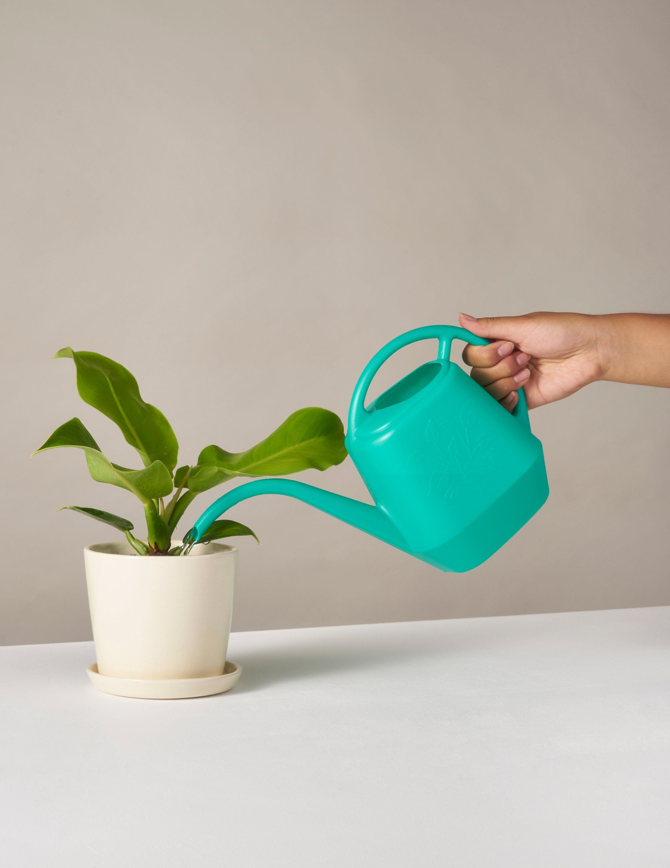 Watering Can With Images Small