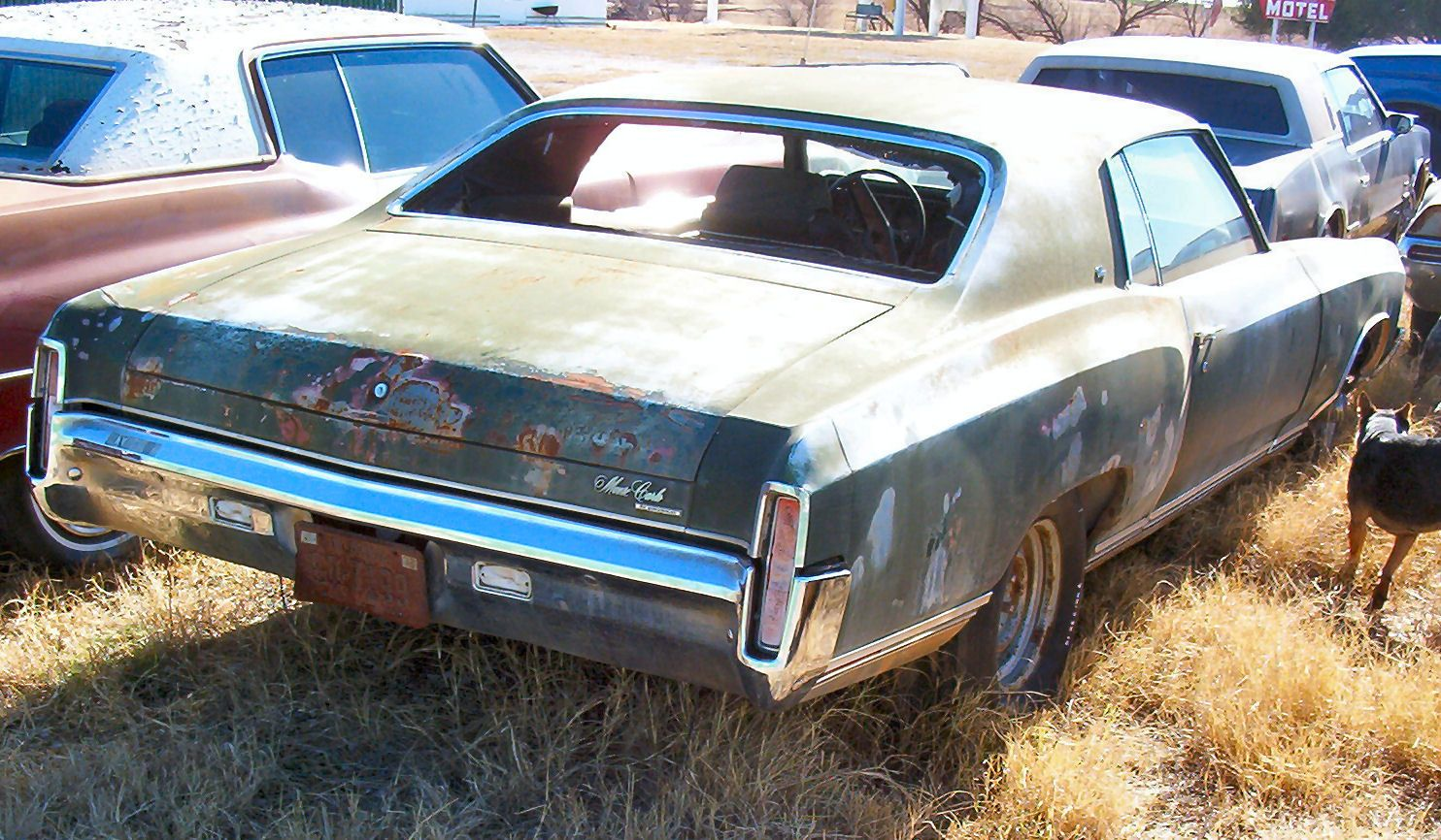 Junk Cars   Left For Dead   Pinterest   monte Carlo, Barn finds ...