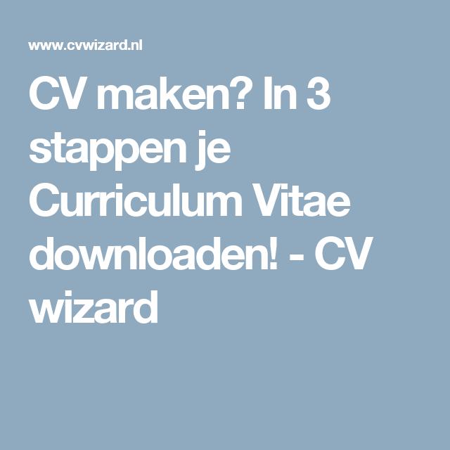 Curriculum Vitae Downloaden Isla Nuevodiario Co