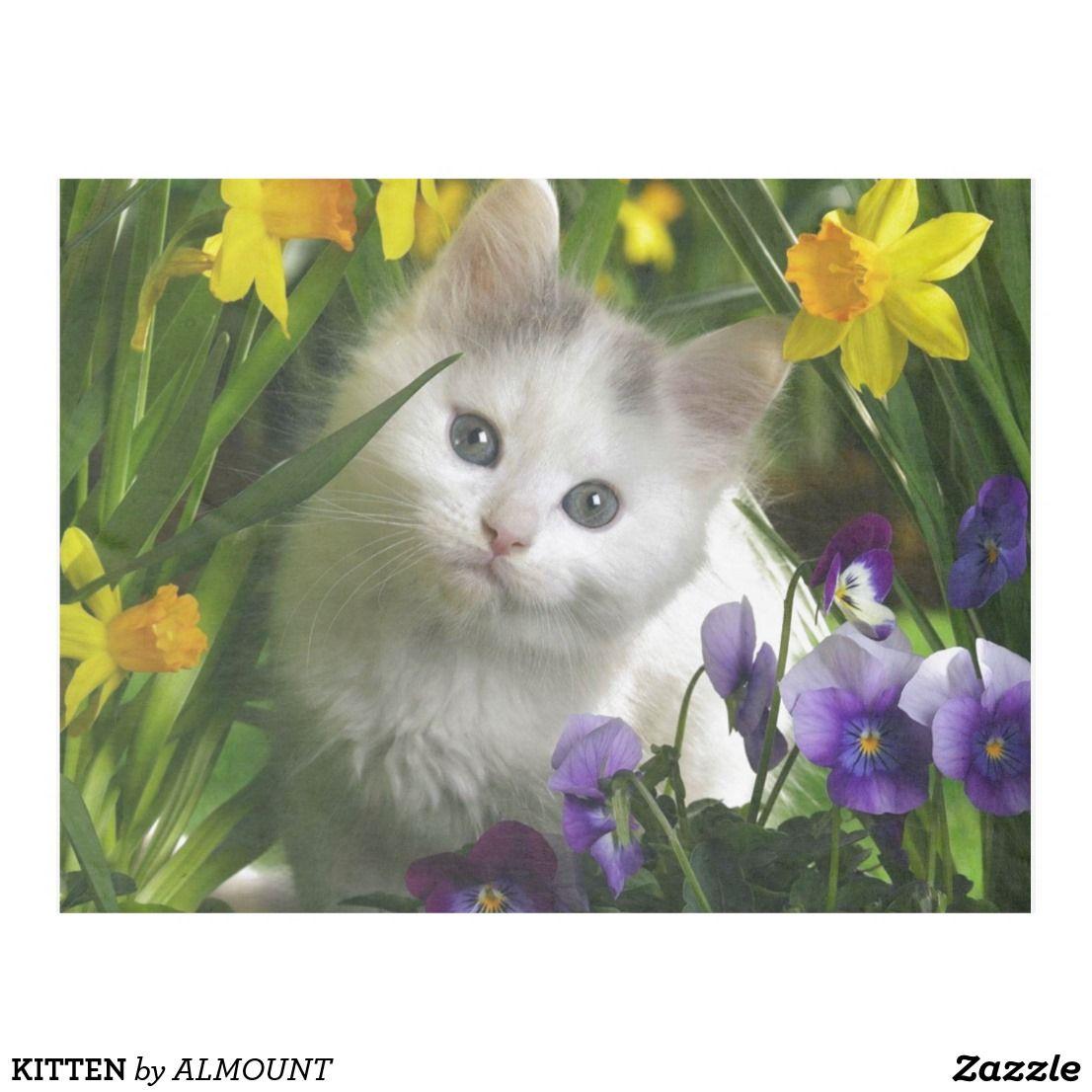 Kitten Fleece Blanket Zazzle Com Kitten Wallpaper Kittens Cutest Cute Animals