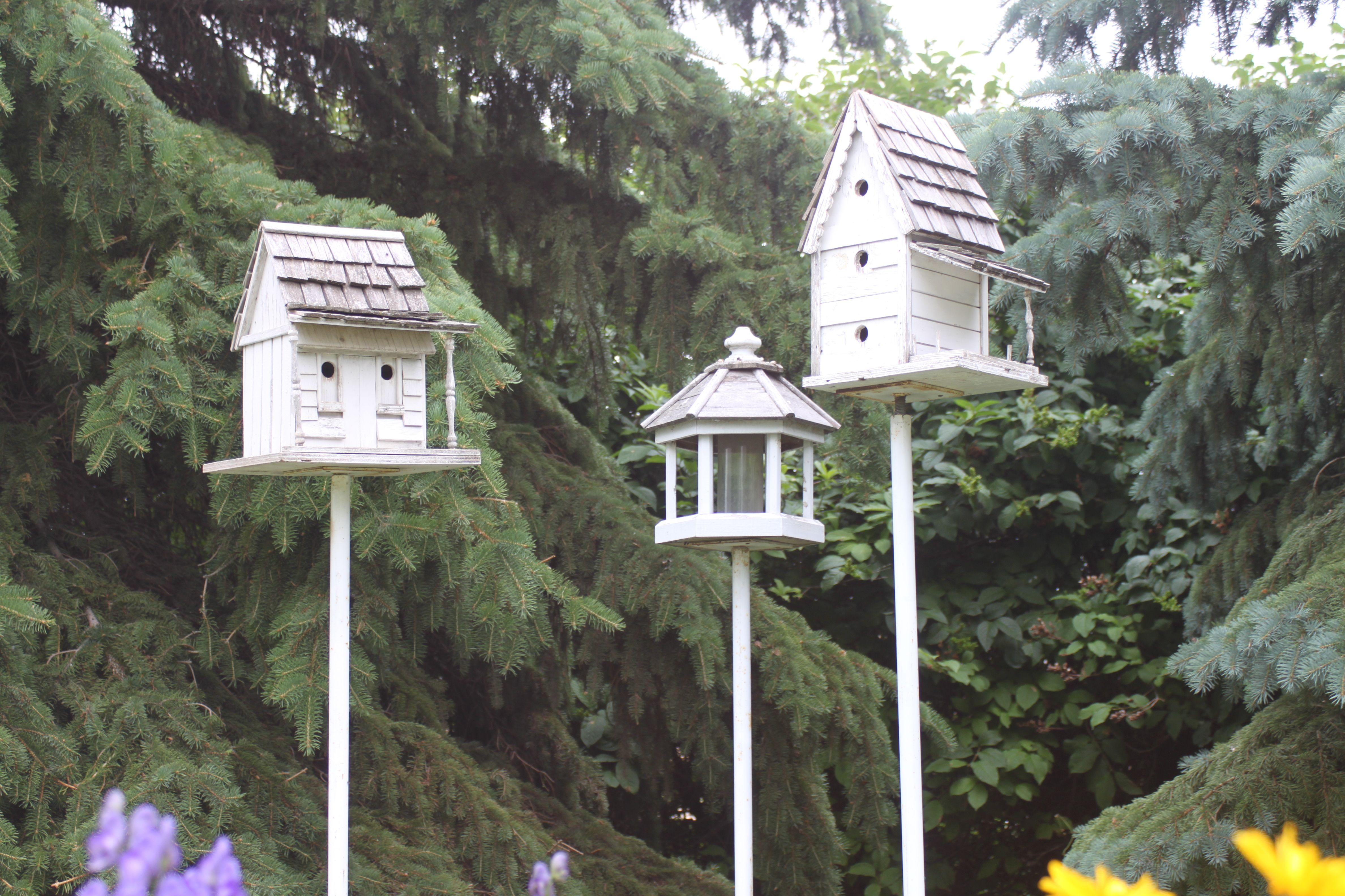rabbithill bird houses