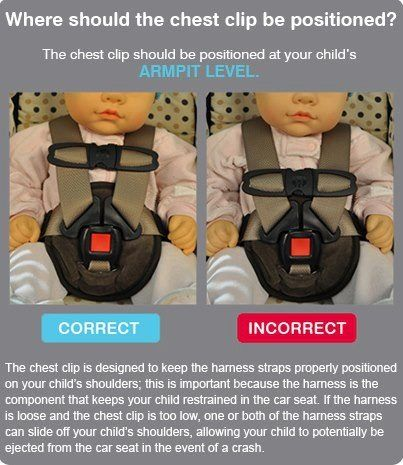 Car seat chest clip positioning. | Health & Safety