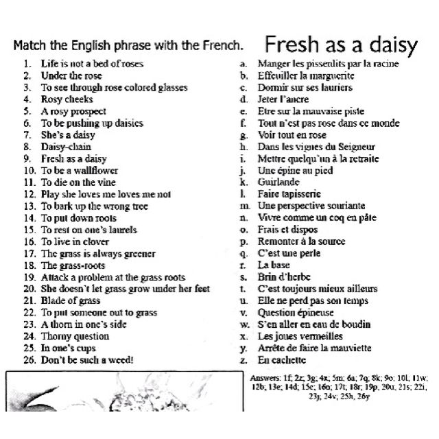 english phrases in french