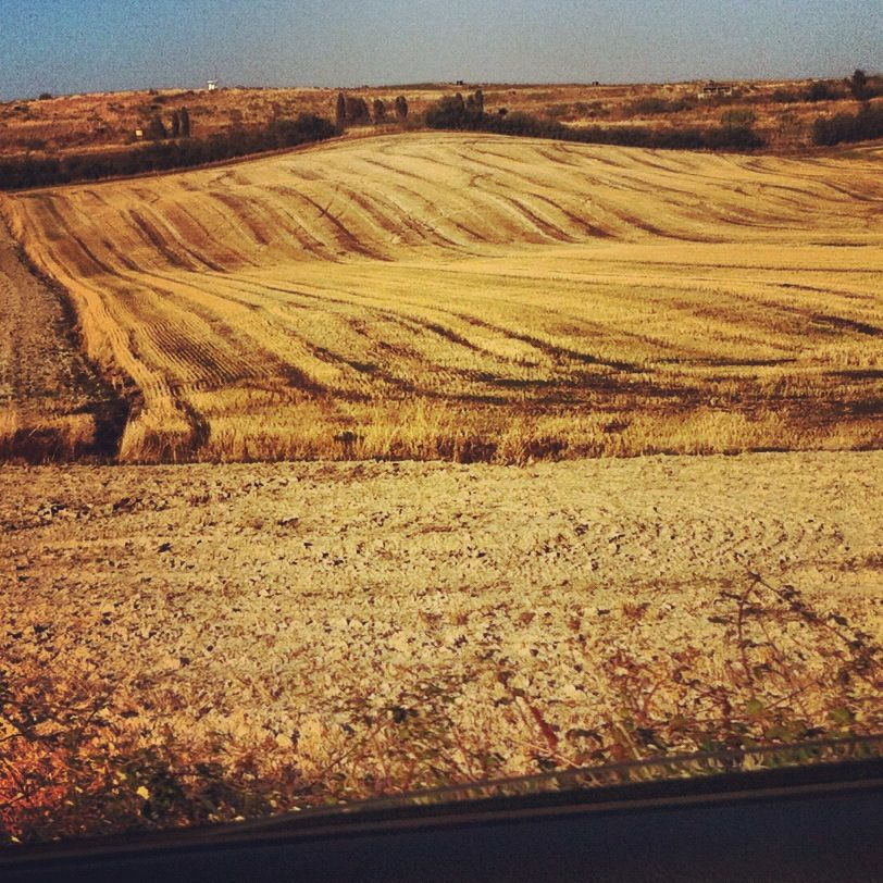 while driving on the south-Tuscan hills