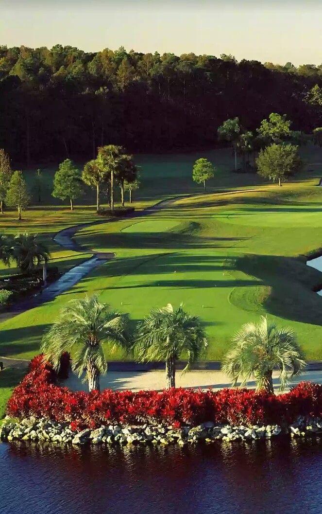 26+ Campus golf course information