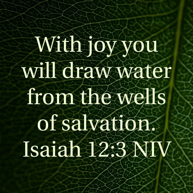 Drink from your well