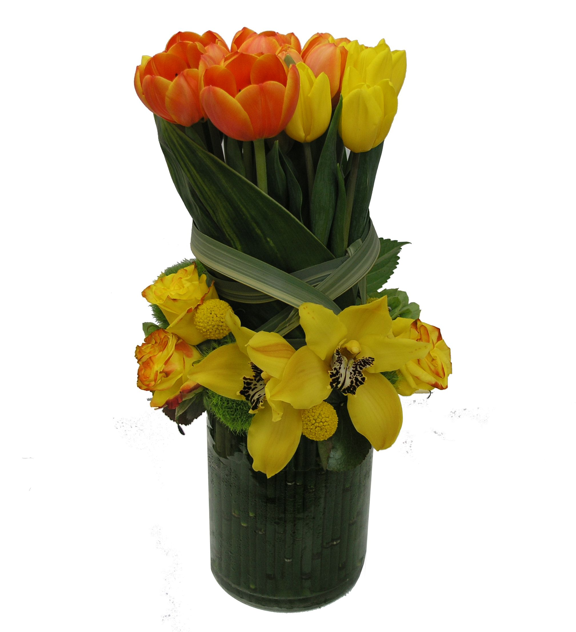 and green tulips of pin white decor plant arranged ireland bells in home oval apple vase arrangement tulip office