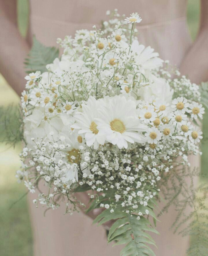 Romantic Rustic Bouquet Featuring White Chamomile Daisies Daisies Baby S Breath Flower Bouquet Wedding Spring Wedding Flowers Wedding Flowers