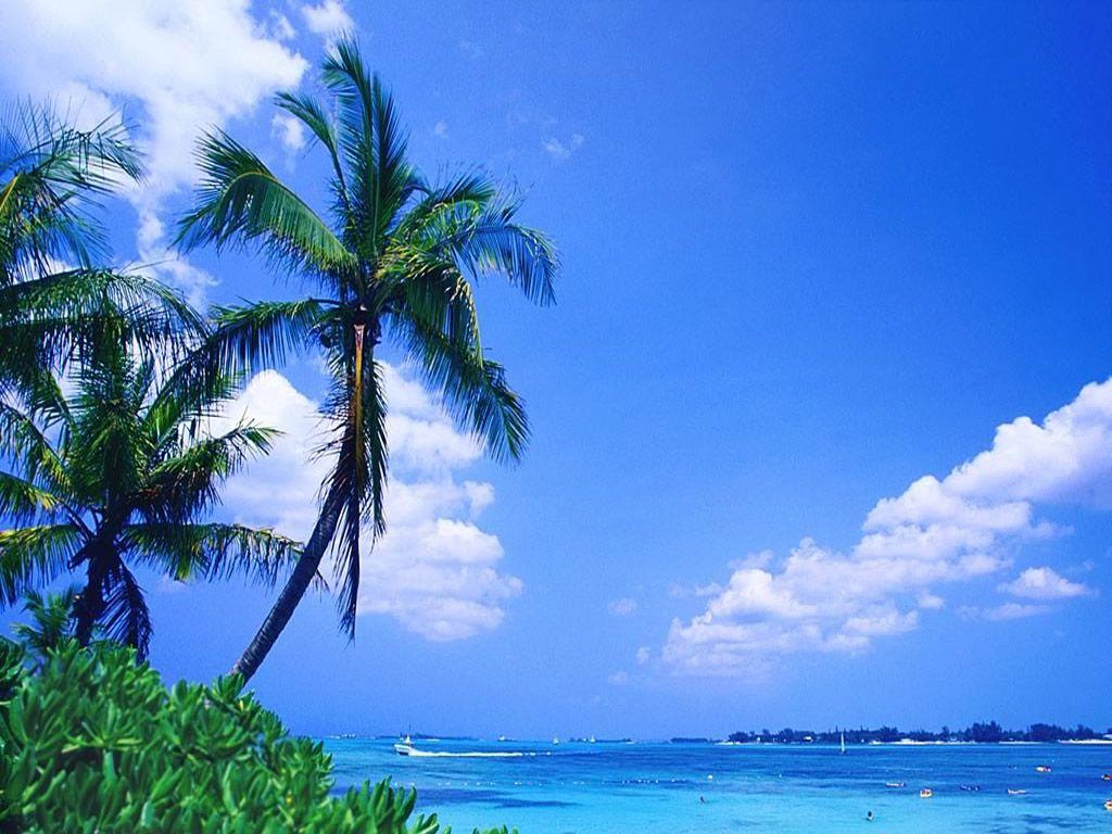 Tropical Beach Wallpaper 061 Free Desktop Wallpapers Cool Wallpapers Bahamas Bahamas Travel Nassau Bahamas