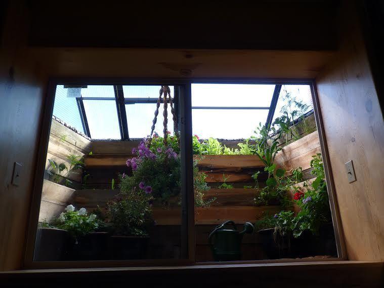 Greenhouse diy window well greenhouse window well