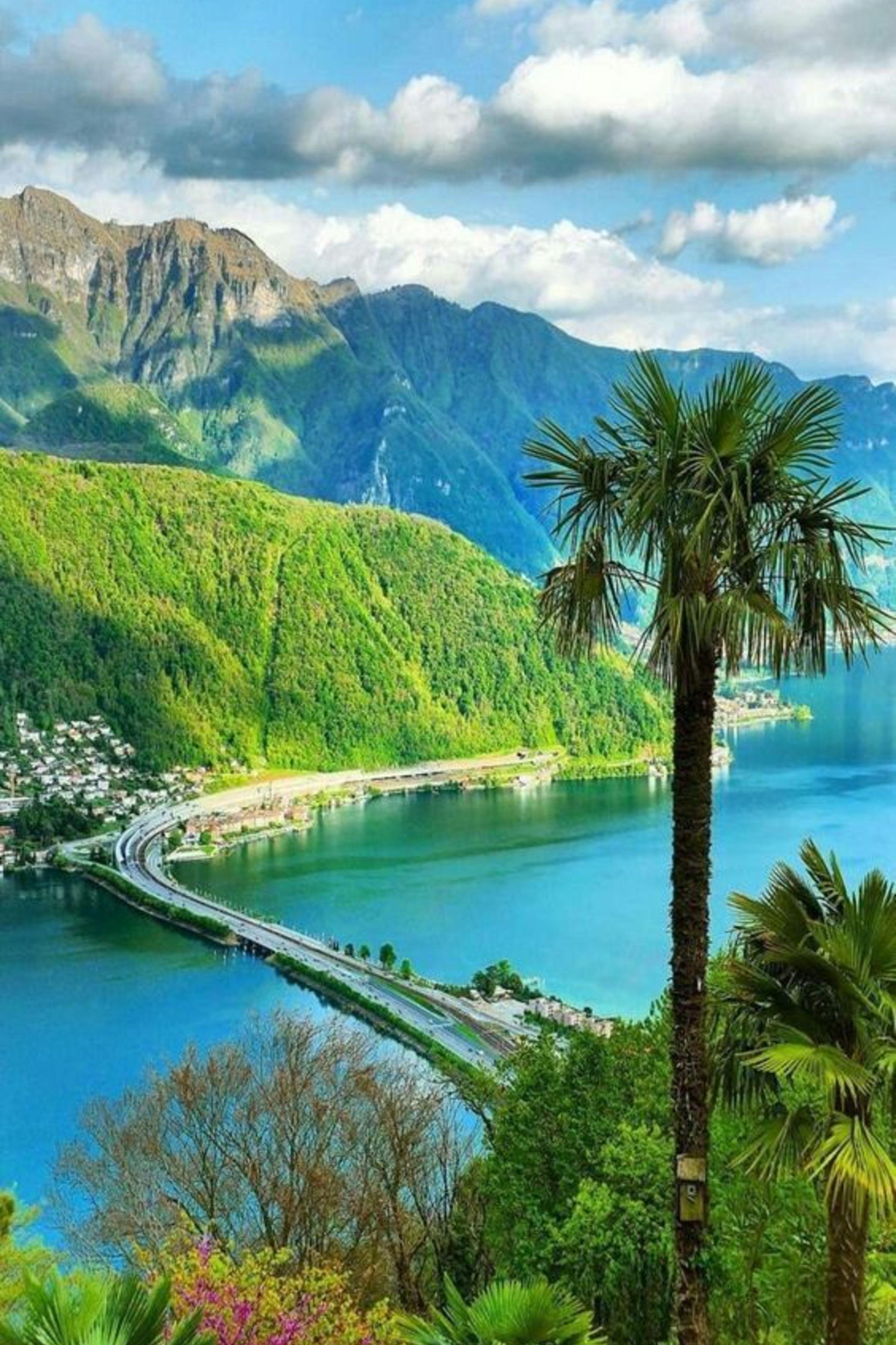 Enjoy The Palm Life Usapalm Com Beautiful Places Nature Beautiful Nature Beautiful Landscapes
