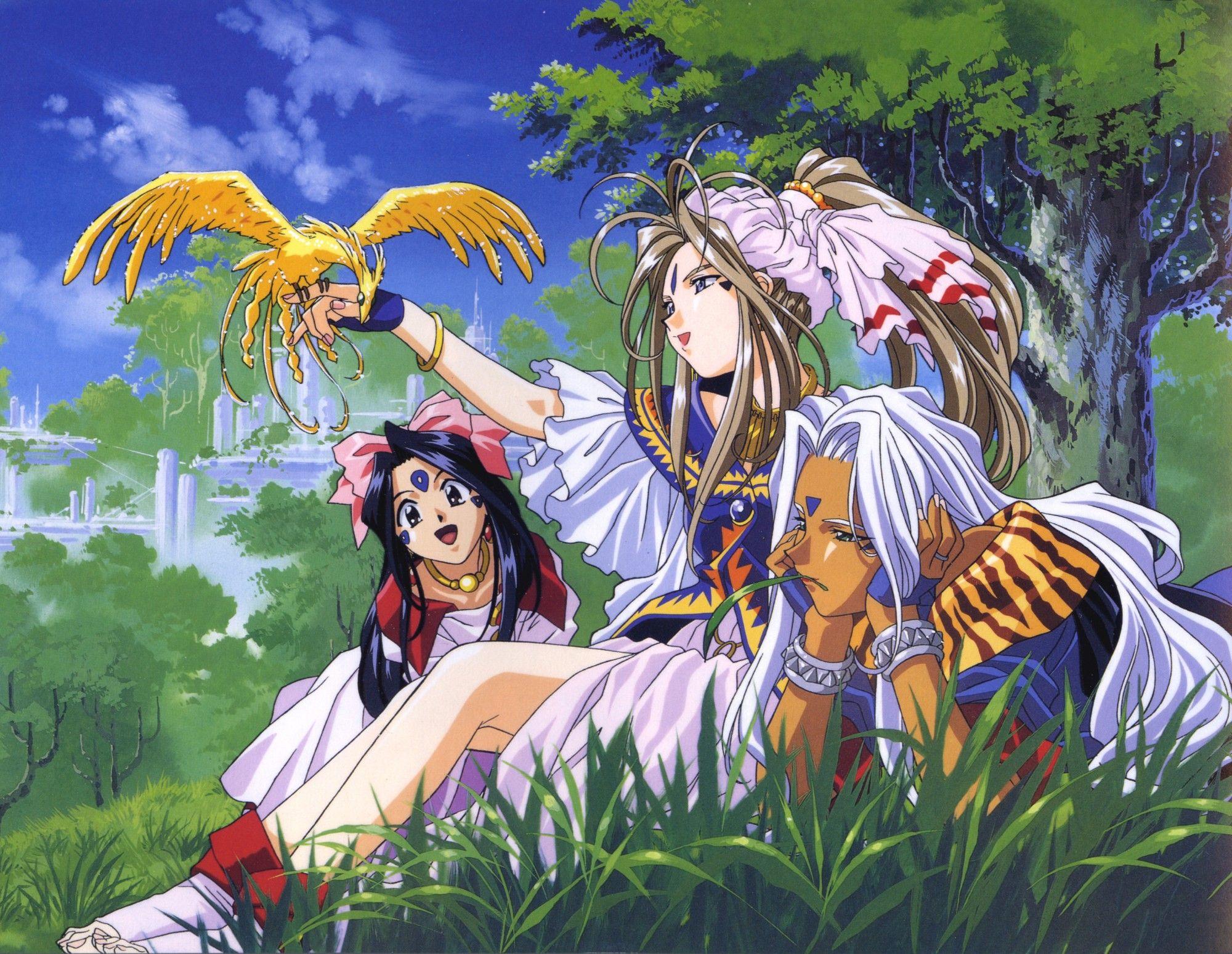 Megamisama chuuihou the animation