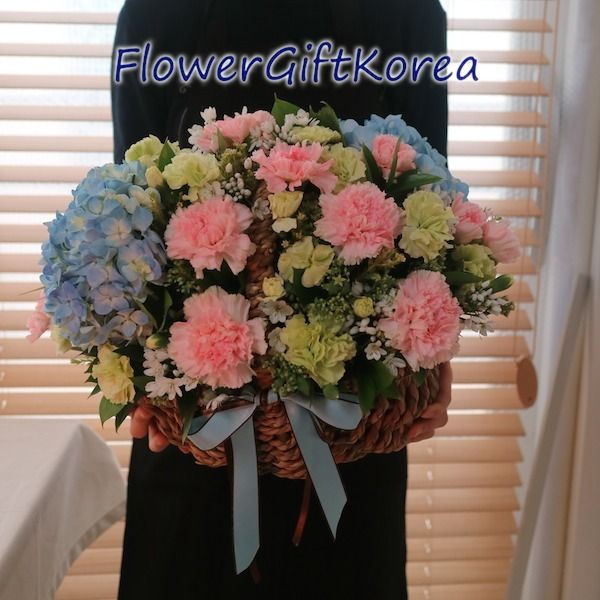 Here Is A Beautiful Flower Basket Made In Gangnam Seoul Korea There Are Blue Hydrangeas Pink Carnations Lime Carnations White Fillers And Mixed Greens