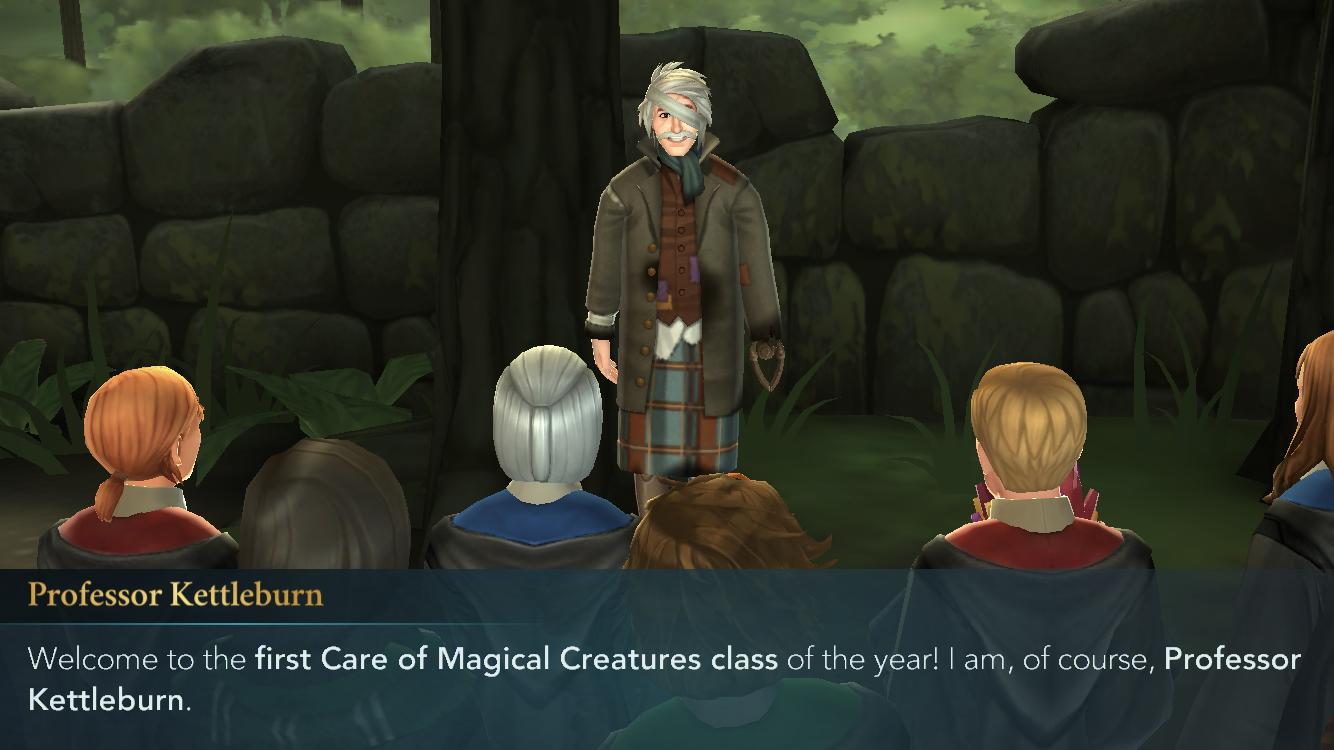 Hogwarts mystery care of magical creatures weird