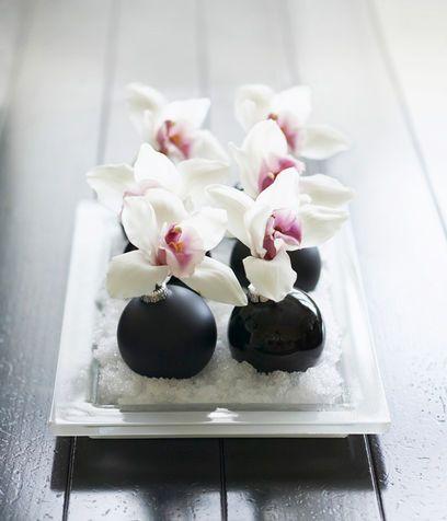 orchidea decor1