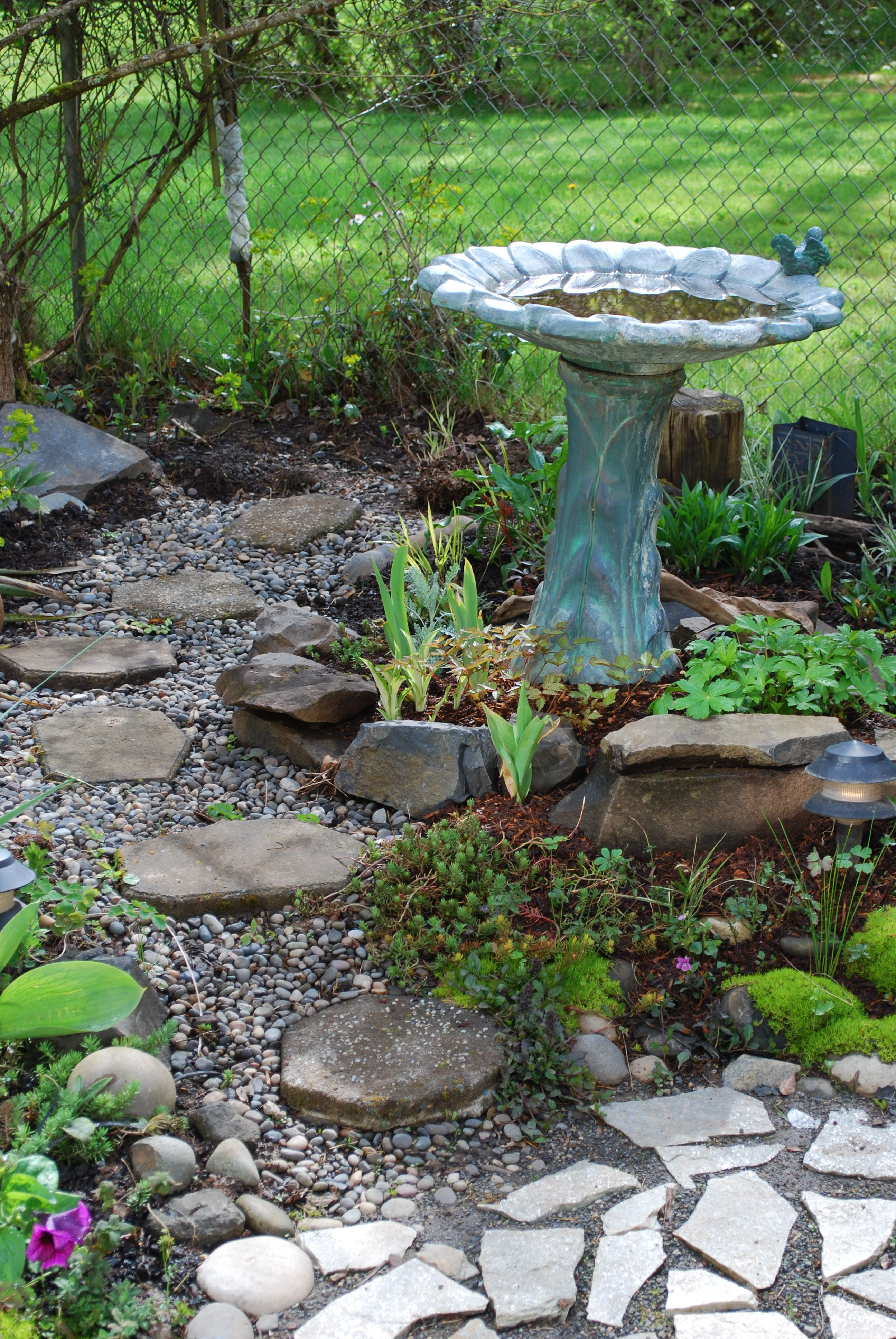 Bird bath area | Front yard plants, Shade garden, Bird ... on Birds Backyard Landscapes id=40711