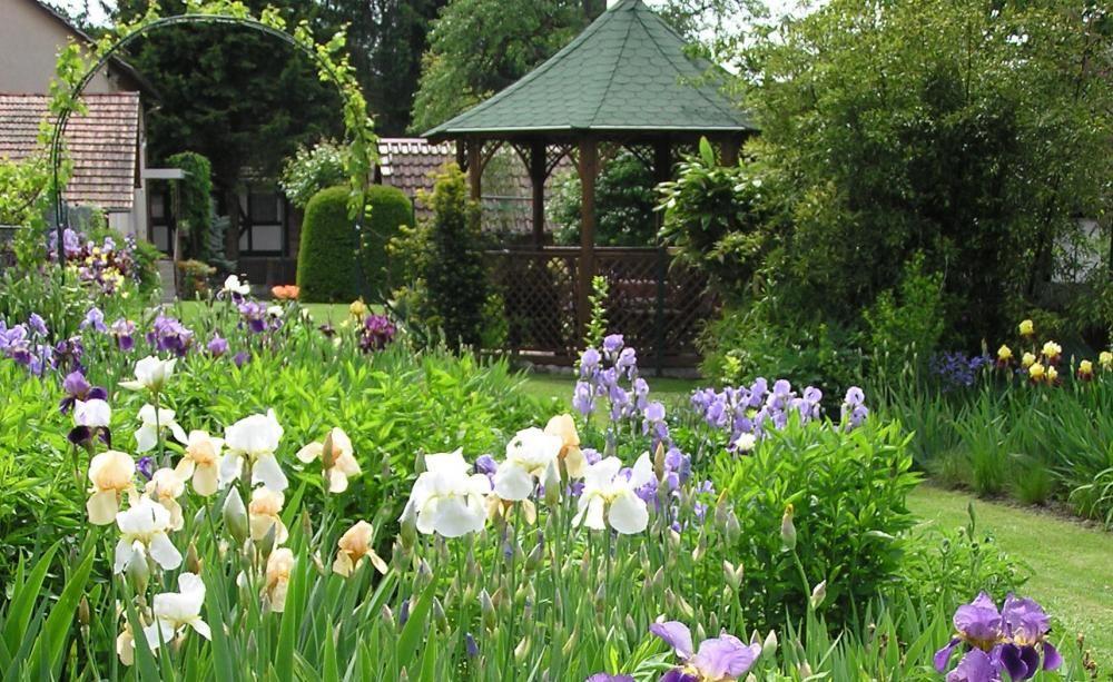 Profi Tipps Fur Die Gartenplanung Garten Pflanzideen Gartenplanung